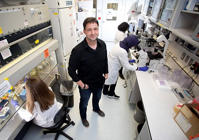 We're Showing The World How Biomolecules Affect Blood Vessels In Lungs